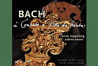 Rainer Zipperling, Sabine Bauer Bauer - Sonaten Für Gambe & Cembalo Bwv 1027-1030b [SACD Hybrid]