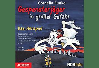 - Gespensterjäger in großer Gefahr  - (CD)