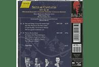 Bach Collegium Stuttgart - Weltliche Kantaten BWV 208+209 [CD]