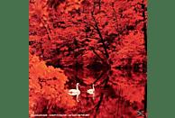 Red Favorite - RED FAVORITE [Vinyl]