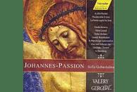ST.PETERBURGER MARIINSKY THEAT - JOHANNES-PASSION [CD]
