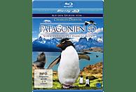 Patagonien 3D – Auf den Spuren von Charles Darwin [3D Blu-ray]