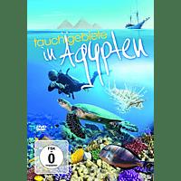 Tauchgebiete In Ägypten [DVD]