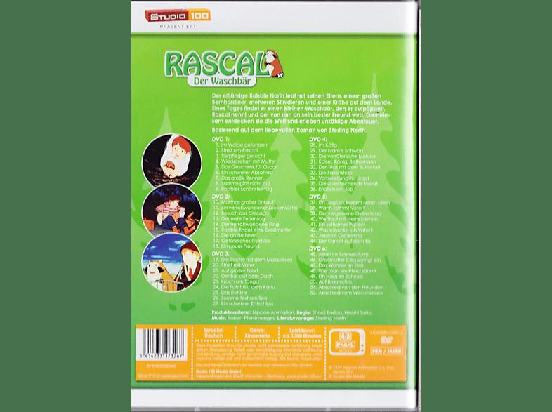Rascal der Waschbär Komplettbox [DVD]