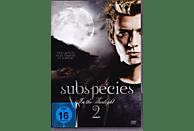 Subspecies 2 - Bloodstone [DVD]