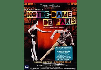 Natalia Osipova, Roberto Bolle, Mick Zeni, Ballet Company and Orchestra of Teatro alla Scala - Roland Petit's: Notre-Dame De Paris  - (DVD)