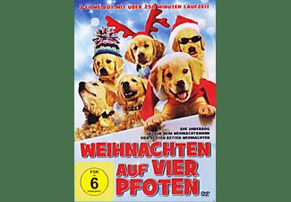 Weihnachten auf vier Pfoten DVD
