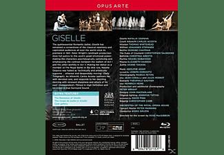 Osipova/Acoste/Gruzin/Petipa - Giselle  - (Blu-ray)