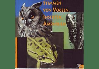 VARIOUS - Stimmen Von Vögeln, Insekten, Amphibien  - (CD)
