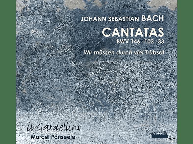 L./Weynants/Ullmann/Ponseele/Il Gardell Guglielmi - Kantaten BWV 33,103,146 [CD]