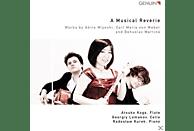 VARIOUS - A Musical Reverie [CD]