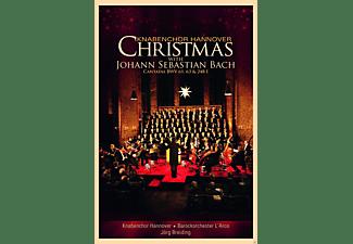 Knabenchor Hannover, Barockorchester L'Arco - Christmas With Johann Sebastian Bach  - (DVD)
