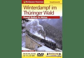 RioGrande-Videothek - Winterdampf im Thüringer Wald DVD