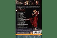 Surguladze, Surguladze/Lungu/Zabala/Gardina/Do/Montanaro/+ - Carmen [DVD]