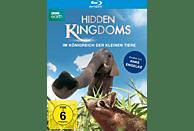 Hidden Kingdoms - Im Königreich der kleinen Tiere [Blu-ray]