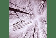 Rudolph Junge Deutsche Philharmonie & Barshai - Mahler: Sinfonie 10 [CD]
