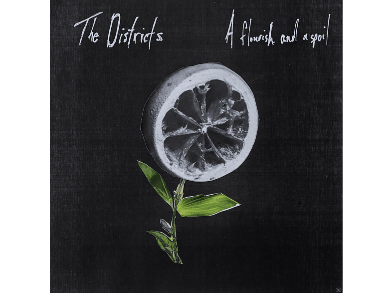 The Districts - A Flourish And A Spoil [Vinyl]