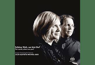 KLEITER,JULIA & GEES,MICHAEL - Schöne Welt, wo bist Du?  - (CD)