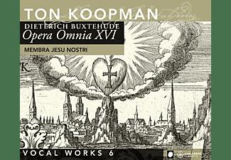 TON & AMSTERDAM BAROQUE ORCH. Koopman, Ton/abo Koopman - Opera Omnia XVI-Vocal Works 6: Me  - (CD)