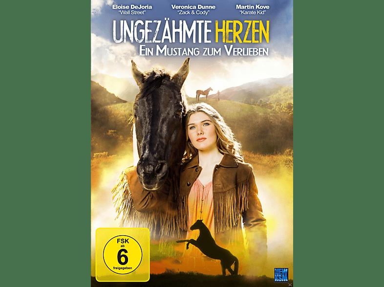 Ungezähmte Herzen – Ein Mustang zum Verlieben [DVD]