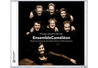 Ensemble Cameleon - Young Hearts On Fire  - (CD)
