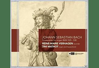 Reine Marie Verhagen, Reine-marie & Tini Mathot Verhagen - Triosonatas For Organ  - (CD)