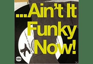 VARIOUS - AIN T IT FUNKY NOW!  - (Vinyl)