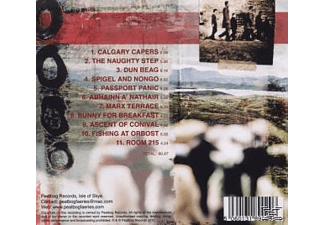 Peatbog Faeries - Dust  - (CD)
