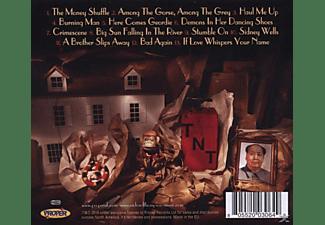 Richard Thompson - Dream Attic  - (CD)