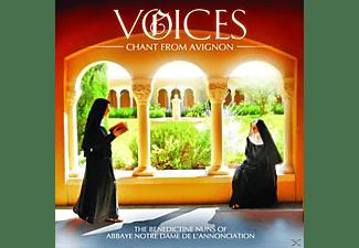 Benedictine Nuns Of Notre-dame De L'annonciation - Voices: Chant From Avignon  - (CD)