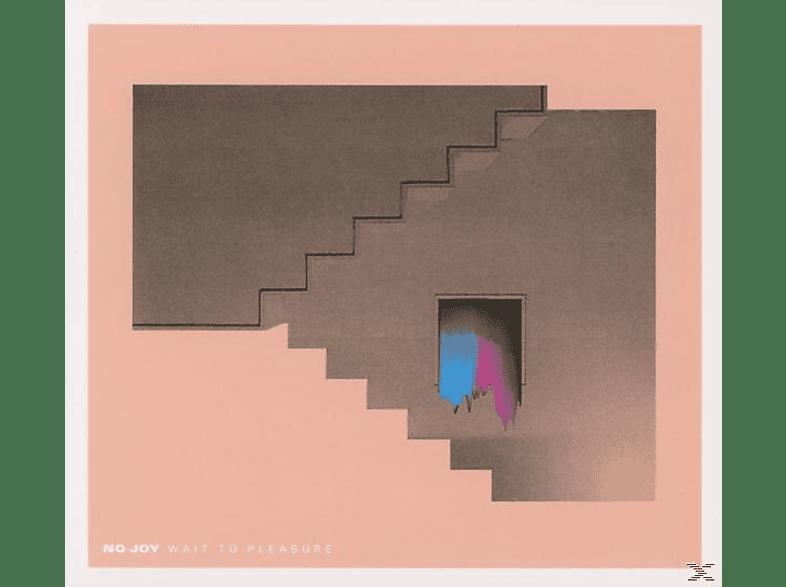 No Joy - Wait To Pleasure [CD]