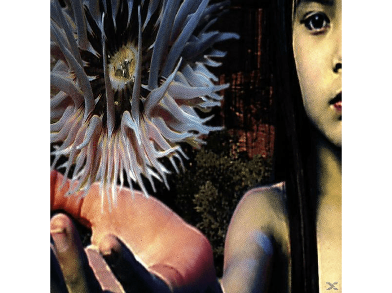The Future Sound Of London - LIFEFORMS [CD]