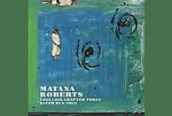 Matana Roberts - Coin Coin Chapter Three: River Run [LP + Download]