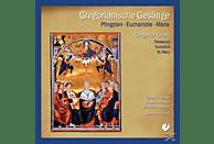 Choralschola Münsterschwarzach - Gregorianik Pfingsten/Eucharistie/Maria [CD]