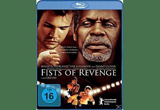 Fists Of Revenge Blu-ray