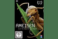 Ameisen - Die heimliche Weltmacht [DVD]