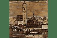 Musica Saeculorum - Pange Lingua-Motetten  (Live Recording) [CD]