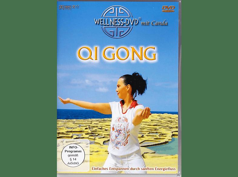 Qi Gong - Einfaches Entspannen durch sanften Energiefluß [DVD]