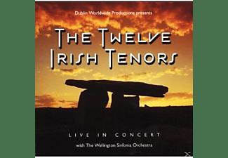 The Twelve Irish Tenors - Live In Concert  - (CD)
