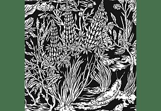 Eternal Tapestry - Wild Strawberries  - (CD)