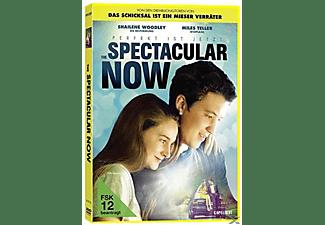 The Spectacular Now - Im Hier und Jetzt DVD