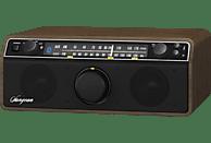 SANGEAN WR 12 BT Radio (FM, MW, UKW, Schwarz/Walnuss)