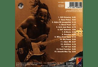R. Gordon - Still Growing  - (CD)