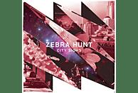 Zebra Hunt - City Sights [Vinyl]