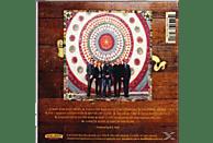 Steve Earle, The Dukes - Terraplane [CD]