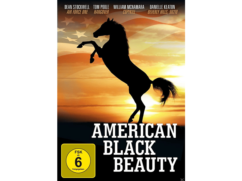 American Black Beauty [DVD]