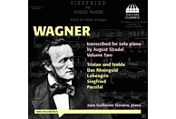 Juan Guillermo Vizcarra - Wagner transcibed for solo piano [CD]
