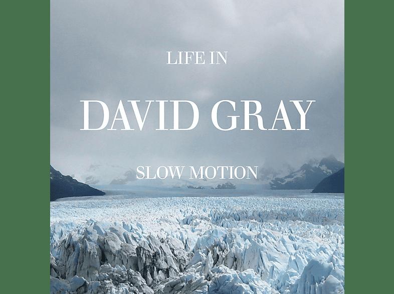 David Gray - Life In Slow Motion [CD]