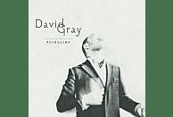 David Gray - Foundling [CD]