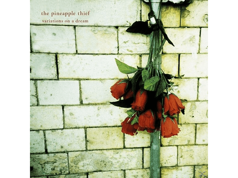 The Pineapple Thief - Variations On A Dream [Vinyl]